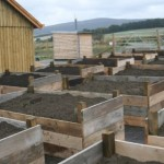 Tarland Community Garden - Outdoor raised beds ready for planting